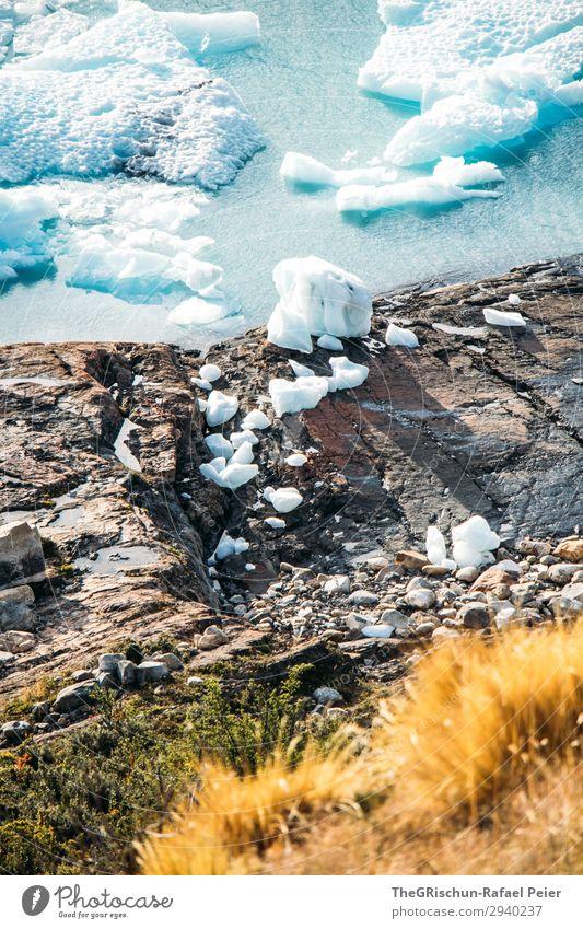 Eisschollen Natur blau türkis weiß Küste Stein Sonnenstrahlen Schnee Perito Moreno Gletscher schmelzen Farbfoto Außenaufnahme Menschenleer Textfreiraum unten