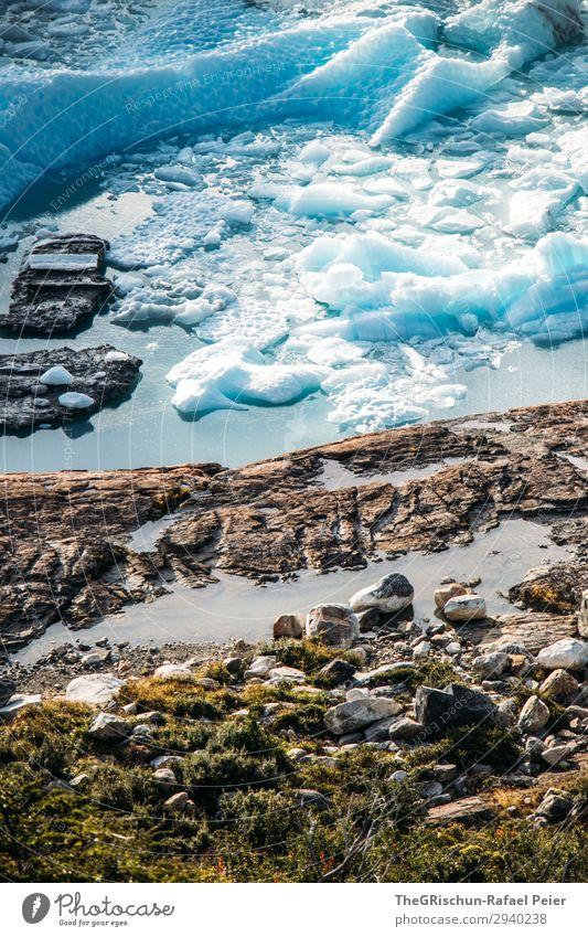 Eisschollen Natur Landschaft blau türkis weiß Perito Moreno Gletscher Stein Küste Wasser Schnee Patagonien Farbfoto Außenaufnahme Menschenleer Textfreiraum oben
