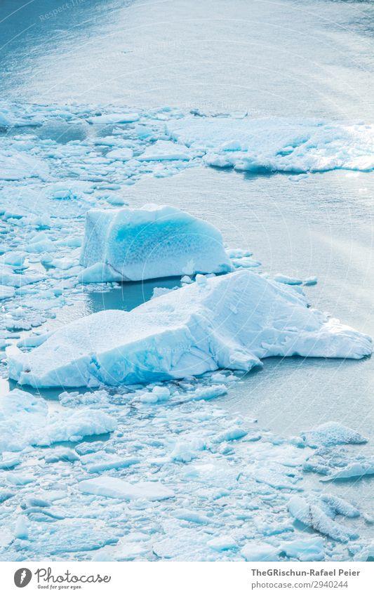 Eisscholle Natur blau türkis weiß Gletscher Perito Moreno Gletscher Im Wasser treiben Argentinien schmelzen Schnee Eisberg kalt Farbfoto Außenaufnahme