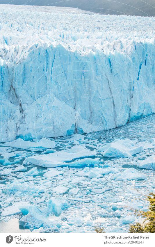 Perito Moreno Gletscher - Argentinien Natur blau weiß Eisscholle schmelzen Riss Klimawandel brechen Wasser Patagonien Farbfoto Außenaufnahme Menschenleer