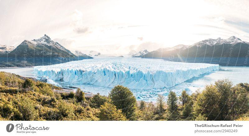 Perito Moreno Gletscher in Patagonien (Argentinien) - Sunset Natur blau türkis weiß Schnee Eis Baum Gegenlicht Berge u. Gebirge Wasser See schmelzen