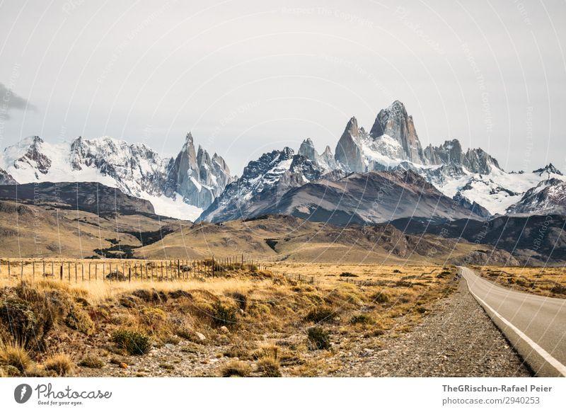 Fitz Roy - Cerro torre Umwelt Natur Landschaft braun gelb weiß Berge u. Gebirge Bergkette Aussicht Cerro Torre Argentinien Straße fahren Schnee Steppe