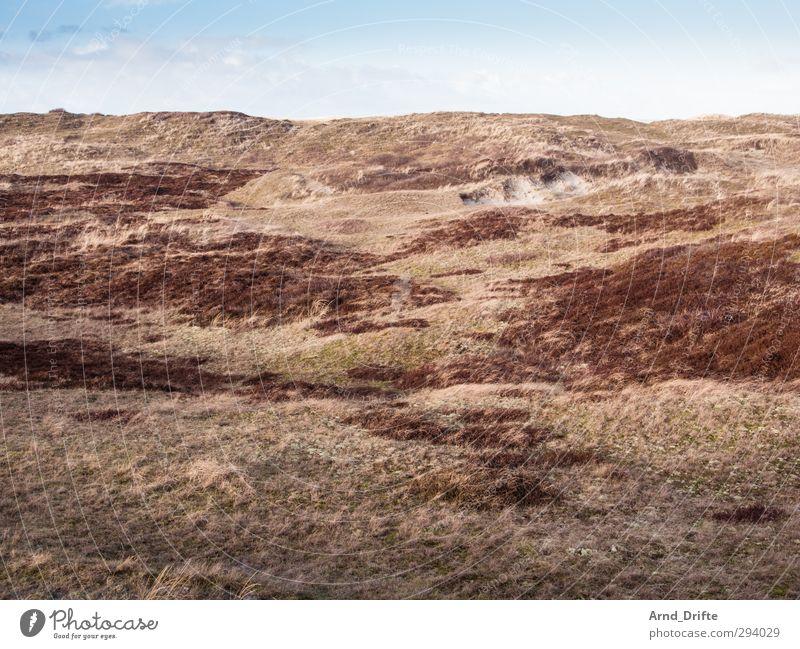 Holland Ferien & Urlaub & Reisen Ausflug Winter Winterurlaub Landschaft Himmel Hügel Küste Deich braun rot kalt Einsamkeit Menschenleer Wiese Dünengras