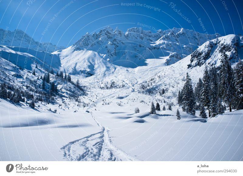 best of you Himmel Natur blau weiß Baum Sonne Einsamkeit Landschaft Winter Umwelt Ferne Berge u. Gebirge kalt Schnee Felsen Linie