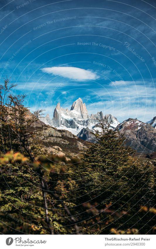Fitz Roy Natur blau grau grün weiß Berge u. Gebirge Sträucher Wolken Himmel rollen Aussicht wandern Patagonien Argentinien El Chaltén el chalten Farbfoto