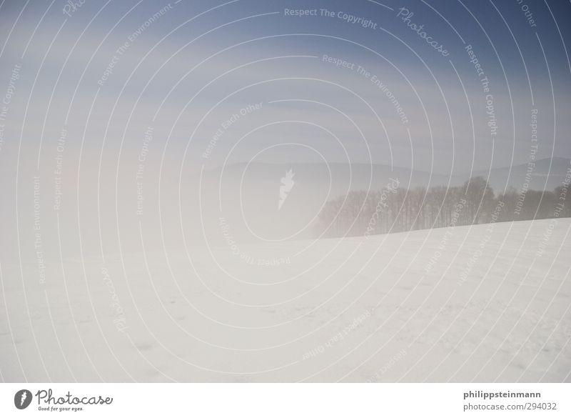ImNebelkleidDasWäldchen Himmel Natur blau weiß Baum Landschaft ruhig Winter Wald schwarz kalt Berge u. Gebirge Schnee Eis Wetter Feld