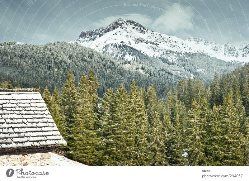 Gute Aussicht Schnee Berge u. Gebirge Häusliches Leben Haus Umwelt Natur Landschaft Pflanze Urelemente Himmel Frühling Klima Schönes Wetter Wiese Wald Alpen