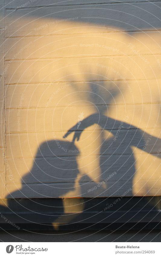Schatten | Hör auf, mir auf dem Kopf herumzutanzen! Mensch Frau Ferien & Urlaub & Reisen Sommer Hand Baum Freude schwarz Erwachsene Wand Leben sprechen feminin Spielen Haare & Frisuren Mauer