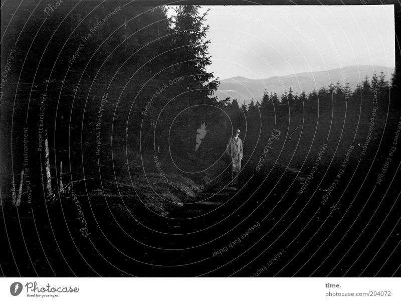 Schatten | Großvaters Abendspaziergang Mensch Himmel Natur alt Einsamkeit Landschaft ruhig Erholung Wald Erwachsene Umwelt dunkel Wege & Pfade maskulin