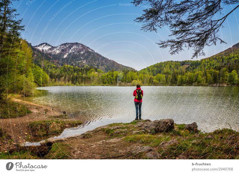 Gebirgssee, Frau stehend Ausflug Abenteuer Ferne Freiheit Berge u. Gebirge wandern Erwachsene 1 Mensch Natur Landschaft Himmel Frühling Schönes Wetter Wald