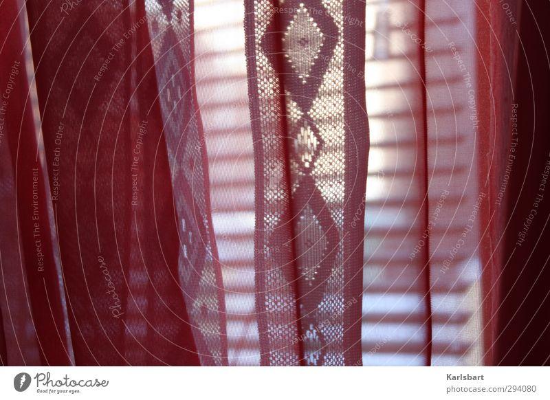 schatten | verschleiert. Winter ruhig Haus Fenster Wand Mauer Innenarchitektur Autofenster Linie Wohnung Häusliches Leben Schönes Wetter Dekoration & Verzierung Streifen Schnur Vorhang