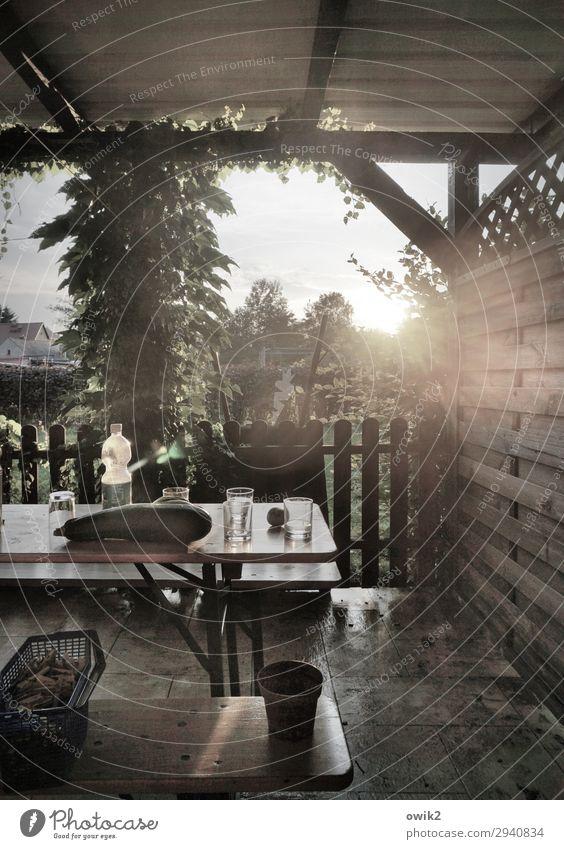 Nach dem Gartenfest Himmel Sommer Sonne Baum ruhig Holz Zufriedenheit leuchten Luft Glas Idylle Schönes Wetter Bank Zaun Terrasse