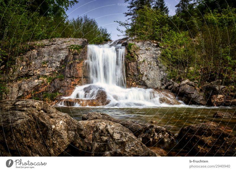 kleiner Wasserfall Zufriedenheit Erholung ruhig Ausflug wandern Natur Landschaft Frühling Sommer Schönes Wetter Pflanze Baum Sträucher Felsen Bach entdecken