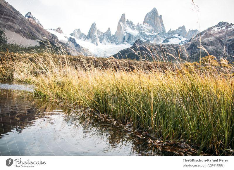 Fitz Roy Umwelt Natur Landschaft grau grün schwarz weiß Gras See Reflexion & Spiegelung Berge u. Gebirge Argentinien el chalten Südamerika Patagonien wandern