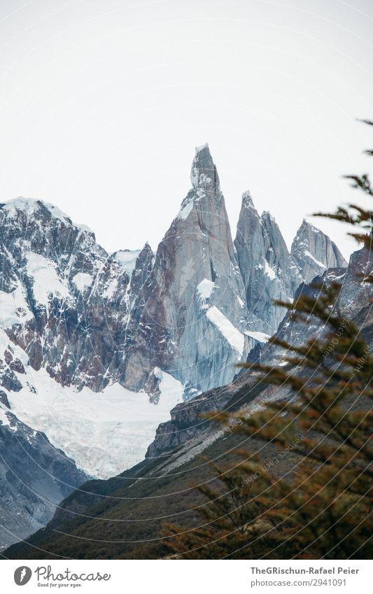 Cerro Torre Natur Landschaft blau grau schwarz weiß Argentinien Berge u. Gebirge wandern Klettern Gletscher Patagonien Spitze Felsen Aussicht Wolken Farbfoto