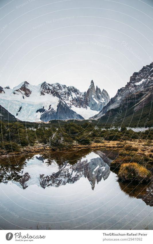 Bergsee Umwelt Natur Landschaft braun grau grün weiß Cerro Torre Argentinien Patagonien See Reflexion & Spiegelung Bergkette Baum Sträucher Aussicht laufen