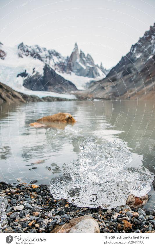 Eis Natur grau weiß Cerro Torre Wasser See Berge u. Gebirge Gletscher schmelzen Patagonien Stein Farbfoto Außenaufnahme Menschenleer Textfreiraum oben