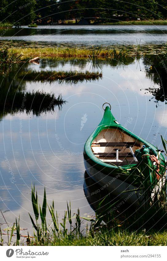 ablegen Natur blau Wasser Sommer Landschaft Umwelt Gras Frühling Küste See Ausflug Sträucher Seeufer sportlich Sommerurlaub Kanu