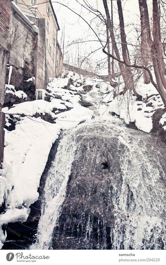 den Bach runter Natur Wasser Landschaft Winter Umwelt kalt Schnee Schneefall natürlich Felsen Eis wild Klima nass Frost Flüssigkeit