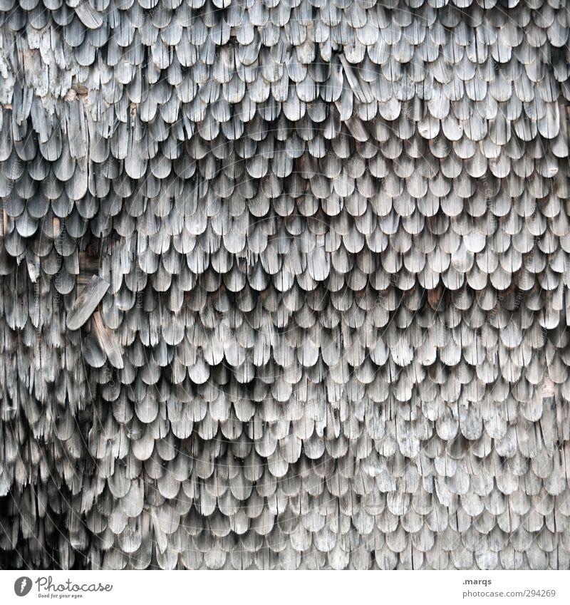 Verwittert Fassade Dachziegel Holz alt dreckig dunkel einfach kaputt Ordnung Verfall verwittert historisch Hütte Schwarzweißfoto Außenaufnahme Detailaufnahme