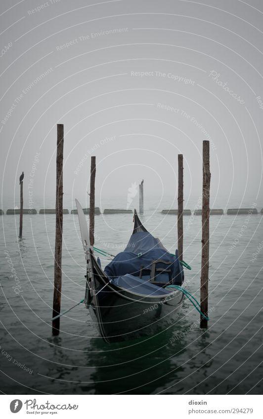 La Gondola Ferien & Urlaub & Reisen Stadt Wasser Meer Winter kalt Schwimmen & Baden Wasserfahrzeug Wetter Nebel Insel Tourismus nass Italien Hafen Schifffahrt