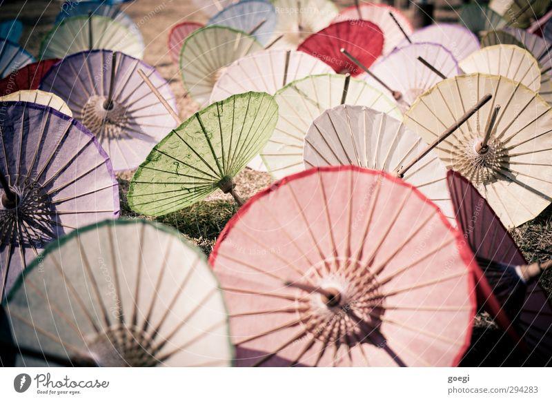 Mmmh... riesengrosse Cocktails Kitsch Krimskrams Souvenir Sonnenschirm Papier Papierschirmchen Holz kaufen Kunsthandwerk Asien Wetterschutz Farbfoto