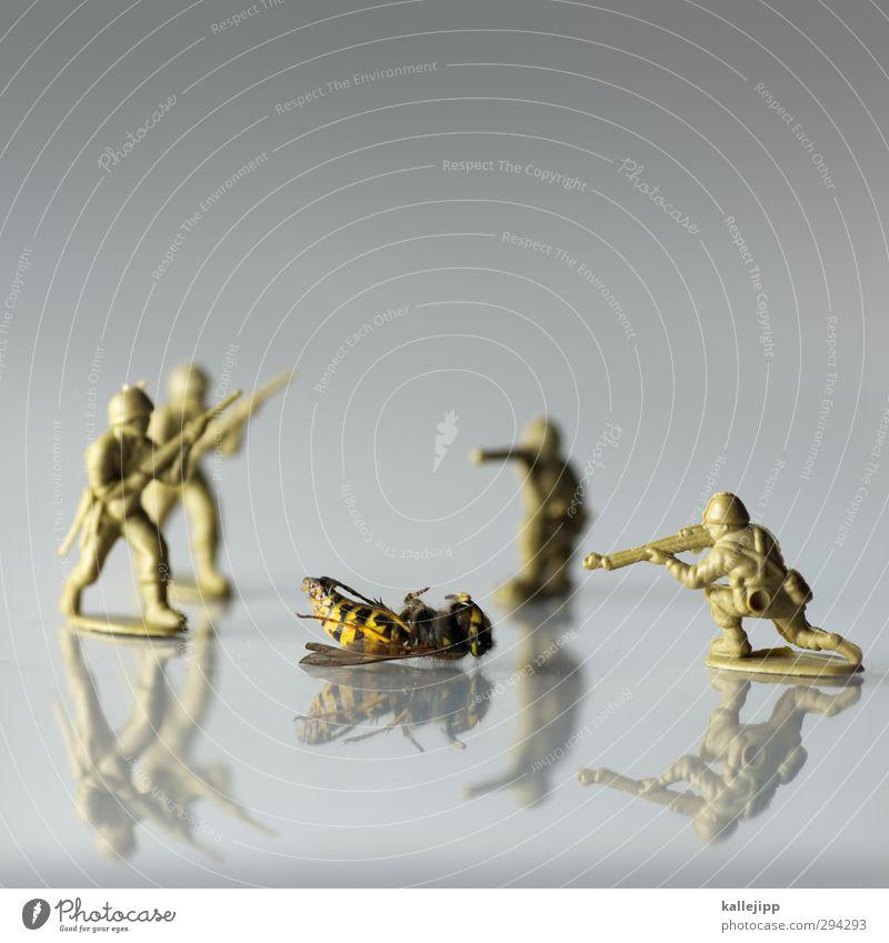 gelbstich Spielen Mensch maskulin 4 Menschengruppe Totes Tier 1 Krieg Krise Soldat Wespen Tod Waffe Waffengewalt Reflexion & Spiegelung Gewehr Spielzeug