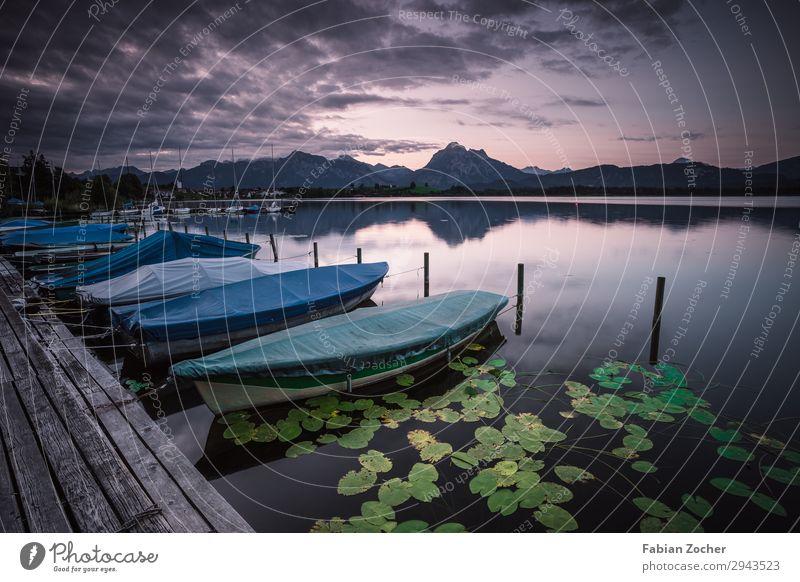 Fischerboote am Hopfensee Angeln Berge u. Gebirge Umwelt Natur Landschaft Wasser Himmel Wolken Horizont Sonnenaufgang Sonnenuntergang Sommer Pflanze Blüte Alpen
