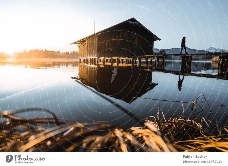 Hütte am Hopfensee im Allgäu feminin 1 Mensch 18-30 Jahre Jugendliche Erwachsene Natur Landschaft Wasser Himmel Sonne Frühling Schönes Wetter Alpen Seeufer