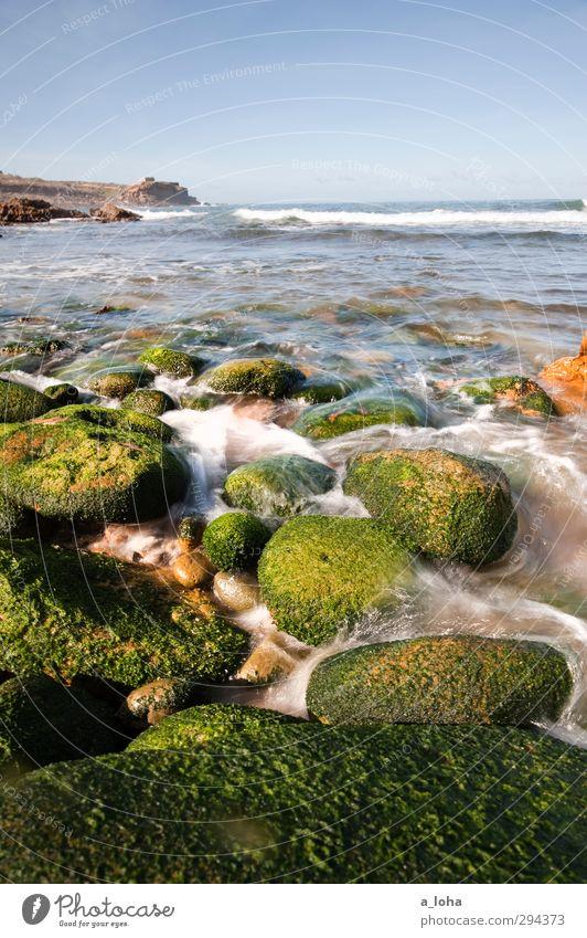 even flow Umwelt Natur Urelemente Wasser Wassertropfen Wolkenloser Himmel Horizont Sommer Schönes Wetter Wärme Pflanze Algen Felsen Wellen Küste Strand Bucht