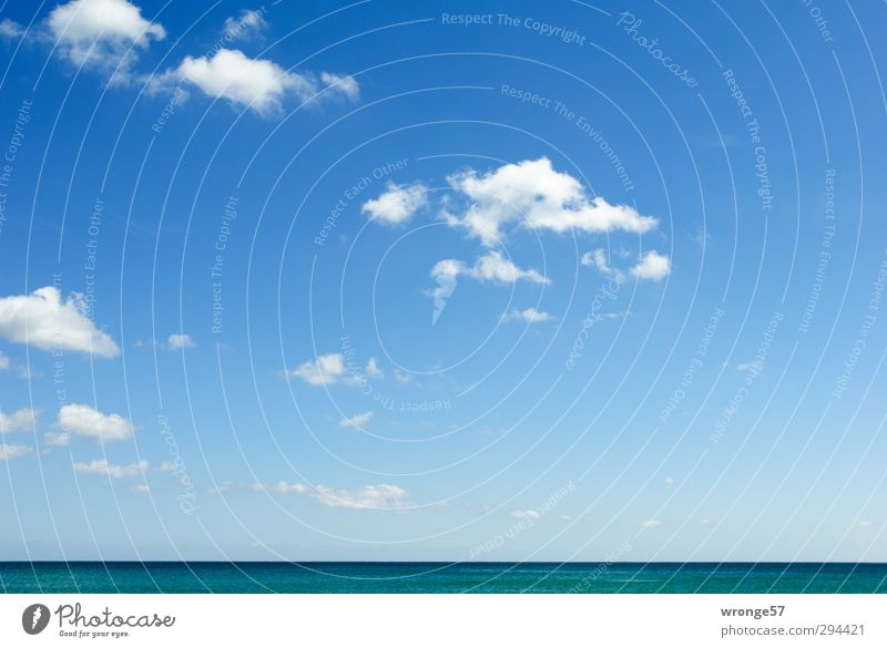 Blau mit weißen Tupfern Himmel Natur blau Ferien & Urlaub & Reisen Wasser Sommer Meer Wolken Ferne Luft Horizont Wetter Schönes Wetter Unendlichkeit