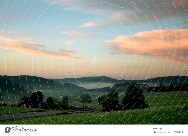 Im Juli Himmel Natur schön Sommer Pflanze Wolken Landschaft Umwelt Wiese Horizont Stimmung Wetter Klima Nebel frisch Schönes Wetter