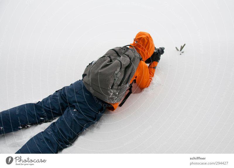 Warten, bis es sich bewegt... Mensch Junge Frau Jugendliche 1 Umwelt Natur schlechtes Wetter Wind Sturm Nebel Eis Frost Schnee Pflanze liegen Fotografieren kalt