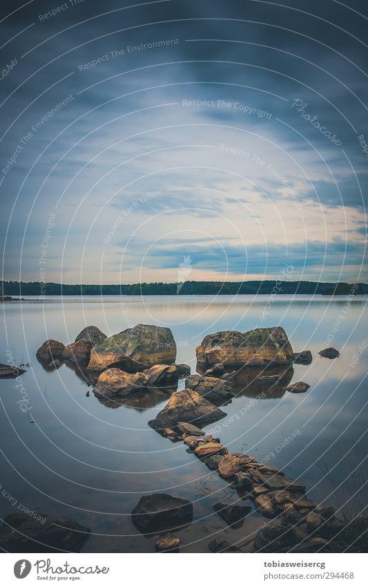 Immeln I Natur blau Wasser Landschaft kalt See