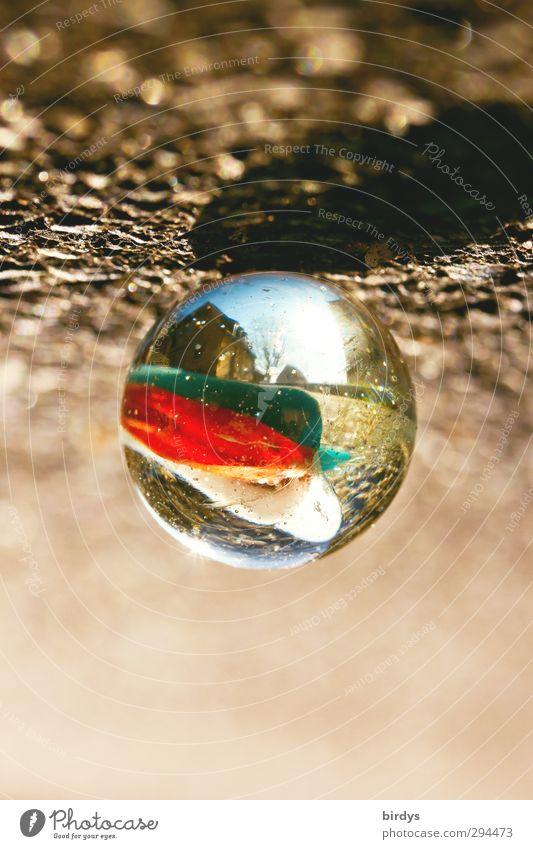 Um den Durchblick zu behalten... Kunst außergewöhnlich Glas leuchten rund Kreativität fantastisch Spielzeug deutlich positiv Durchblick Rätsel Linse Illusion Murmel Glaskugel