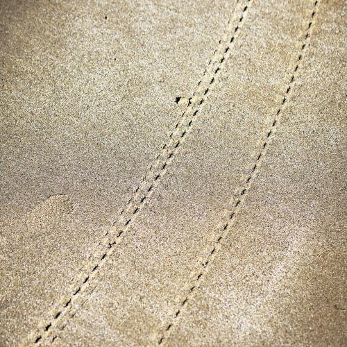 Lebenslinien #59 Strand Umwelt Ferne Sport Bewegung Wege & Pfade Sand Verkehr Perspektive ästhetisch Vergänglichkeit rund Güterverkehr & Logistik skurril