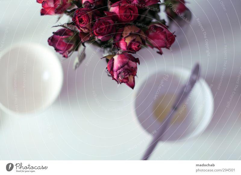 In der Ruhe liegt die Kraft Getränk Heißgetränk Tasse Besteck Messer Lifestyle Häusliches Leben Wohnung Küche Pflanze Rose Zusammensein Liebe Verliebtheit