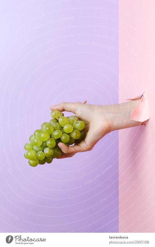 Frauenhand mit reifer grüner Traube Ackerbau lecker Diät Essen Finger Lebensmittel Gesunde Ernährung Foodfotografie frisch Frucht Hand Halt Maniküre organisch