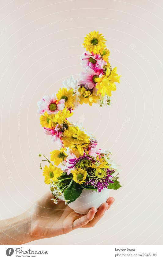 Frauenhand mit Teetasse mit Blumen Pastellton selektiv Halt Hand Tasse Becher Pokal Entwurf Jahreszeiten Pflanze Farbe Blütenblatt Dekoration & Verzierung