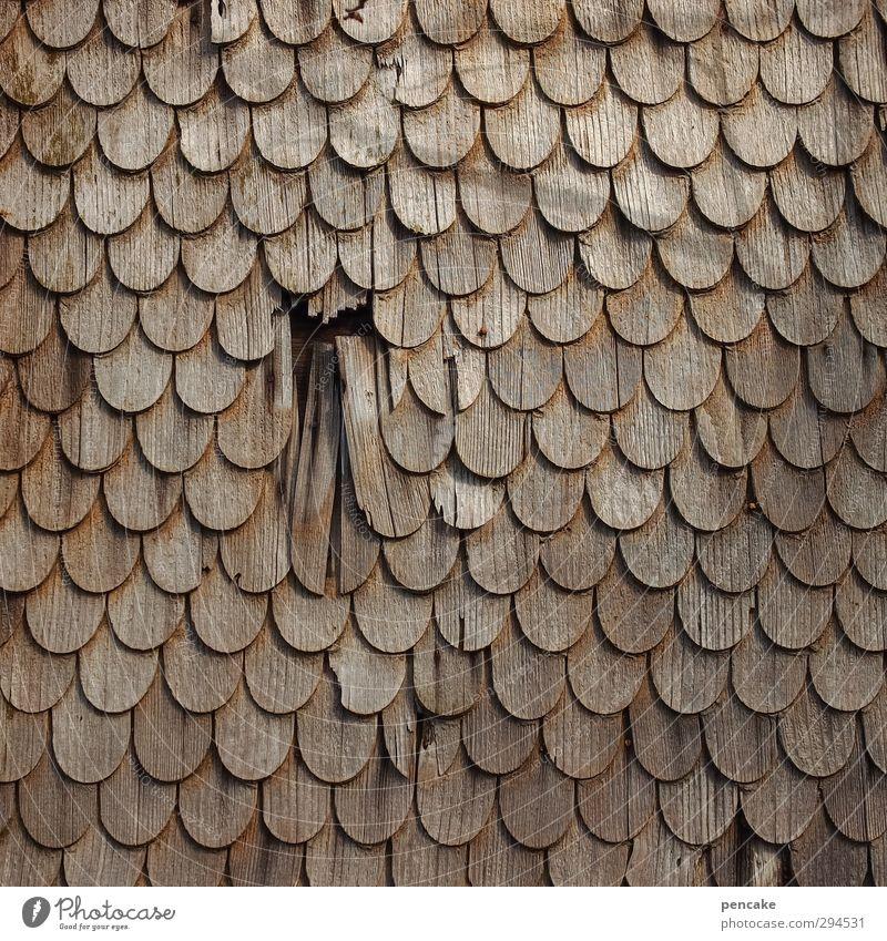 schuppenflechte Haus Holz Fassade Ordnung kaputt rund Tradition Müdigkeit Loch Vernetzung Oberfläche Symmetrie Zunge Reparatur verwittert Schaden