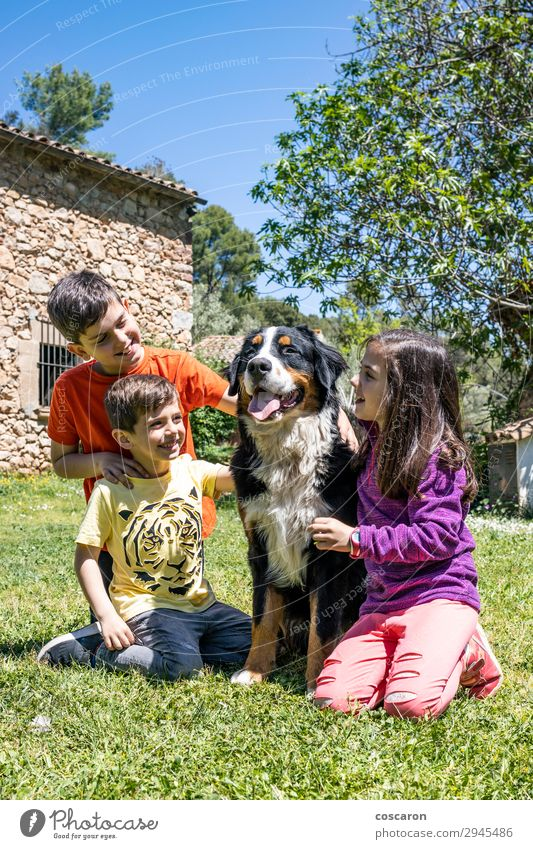 Drei kleine Kinder mit einem Berner Hund Lifestyle Freude Glück schön Leben Freizeit & Hobby Spielen Sommer Garten Mensch Kleinkind Mädchen Junge Frau