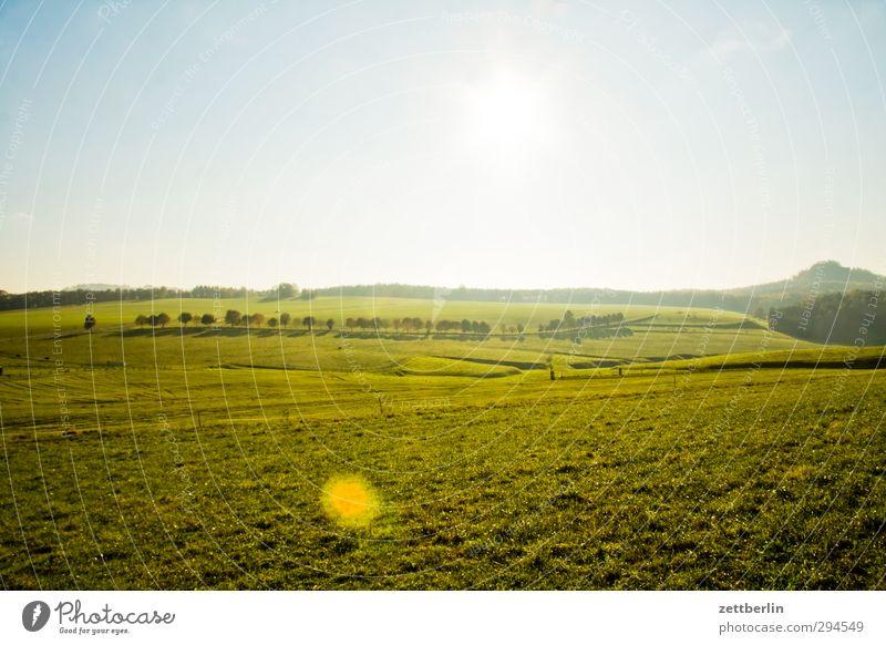 Sächsische Schweiz Erholung Ferien & Urlaub & Reisen Ausflug Umwelt Natur Landschaft Erde Himmel Sonne Sommer Herbst Klima Klimawandel Wetter Schönes Wetter