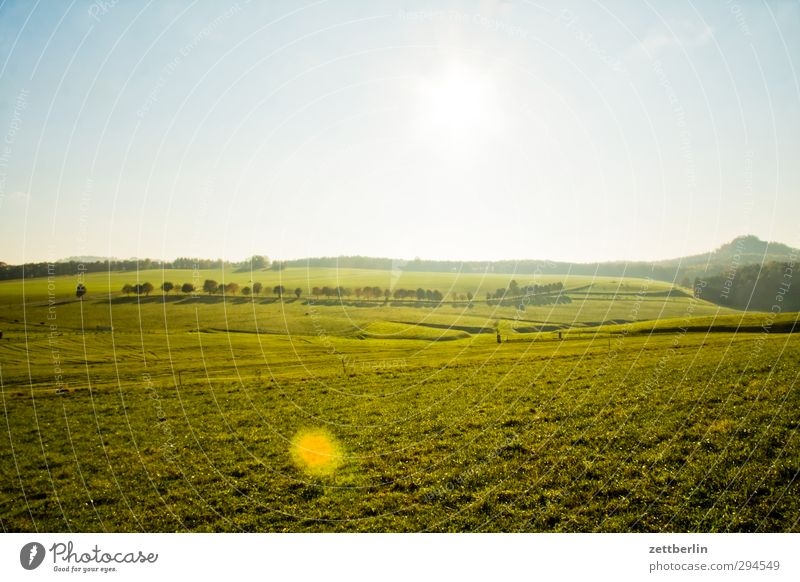 Sächsische Schweiz Himmel Natur Ferien & Urlaub & Reisen Sommer Sonne Landschaft Erholung Wald Umwelt Ferne Wiese Herbst Glück Horizont Wetter Feld