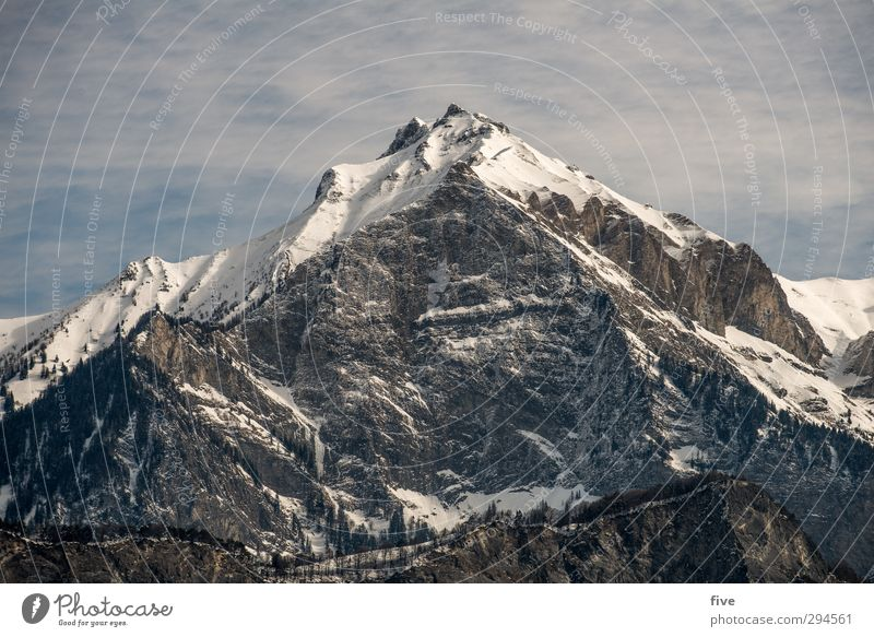 Falknis Umwelt Natur Landschaft Himmel Wolken Sonne Schönes Wetter Schnee Pflanze Baum Wald Hügel Felsen Alpen Berge u. Gebirge Gipfel Schneebedeckte Gipfel