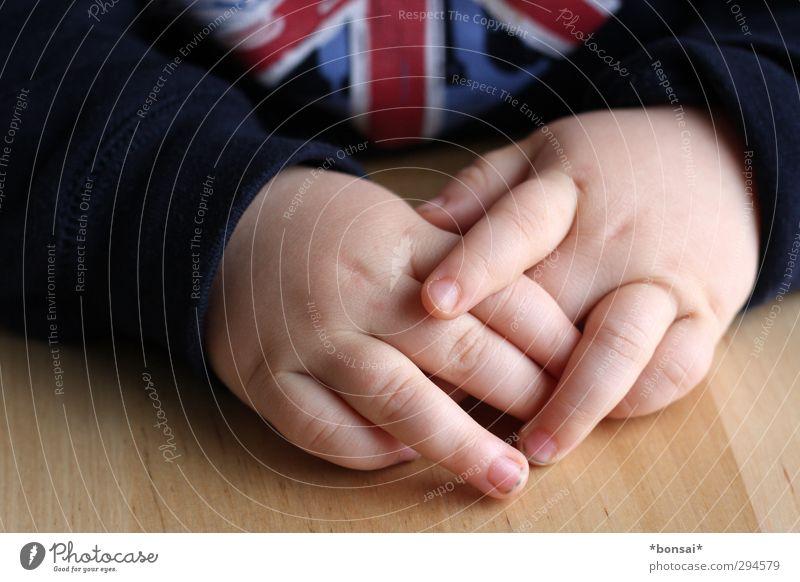 habemus papam - wir üben noch Holztisch Kind Kleinkind Junge Hand Finger 1 Mensch 1-3 Jahre Pullover klein niedlich Geborgenheit Sympathie ruhig Kindheit