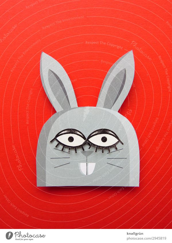 Hasenmutter Tier Hase & Kaninchen Wimpern niedlich grau rot schwarz Freude Kreativität Hasenohren Hasenzahn Basteln Farbfoto Studioaufnahme Menschenleer