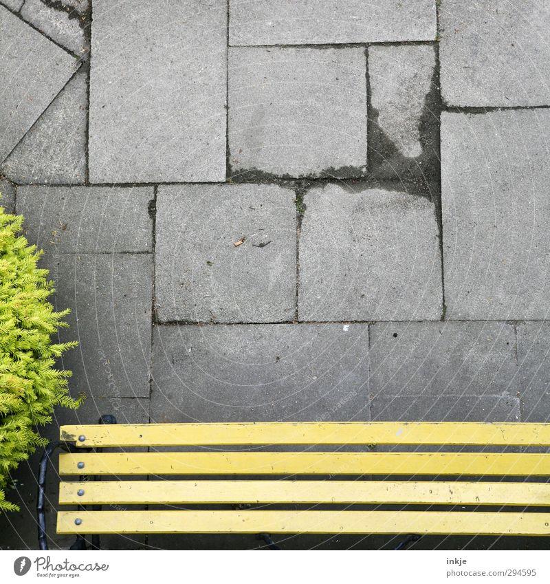 Kippe Häusliches Leben Gartenbank Terrasse Baum Sträucher Buchsbaum Menschenleer Platz Zigarettenstummel Bodenplatten Beton Linie Streifen Rechteck hoch klein