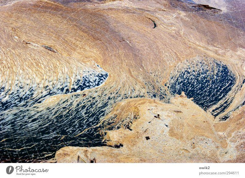 Land Art Natur Wasser Umwelt Bewegung liegen dreckig nass Wandel & Veränderung Flüssigkeit Stress chaotisch Bach trashig fließen Desaster Ekel