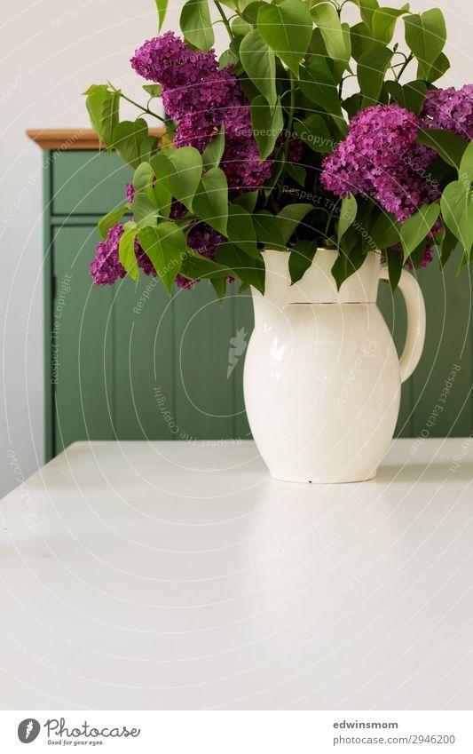 Flieder aus Opas Garten Innenarchitektur Dekoration & Verzierung Wohnzimmer Sträucher Fliederbusch Vase Blühend Duft Erholung Blick verblüht authentisch einfach