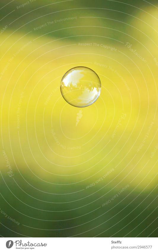 sphere Seifenblase Kugel Blase einfach frei glänzend rund gelb grün achtsam Wachsamkeit Gelassenheit leicht Idylle Symmetrie Leichtigkeit Vergänglichkeit